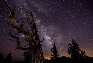 2010-09-10.Astronomy Photographer of the Year, Tom Lowe