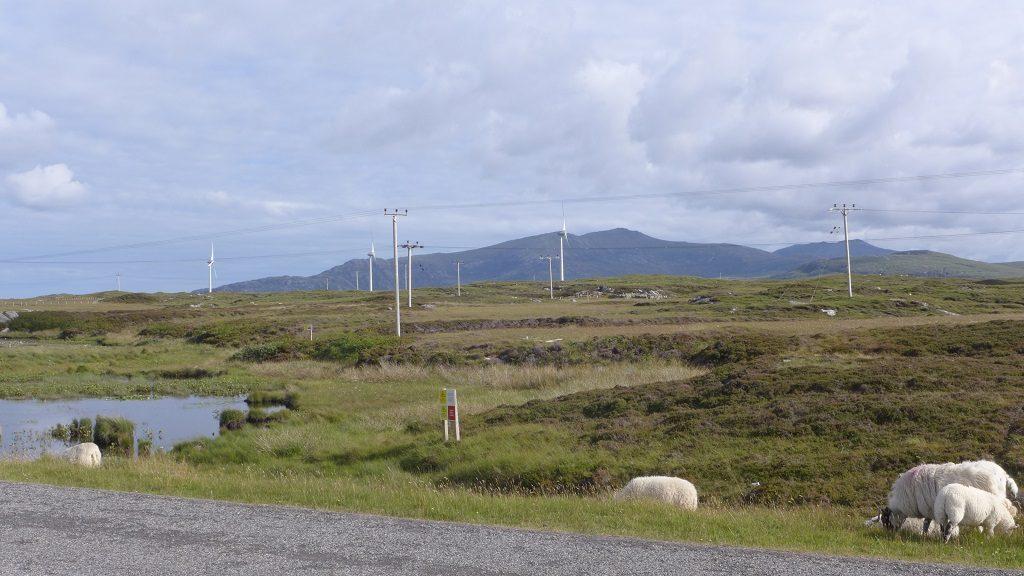 在我们的住处可以看到远处的社区风力发电站
