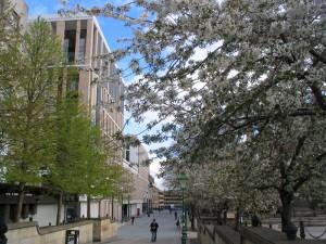 左边的建筑是爱丁堡大学新建的Bioinformatics building