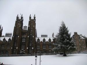 爱丁堡大雪的 New College 外的山坡上摆上了一个大圣诞树