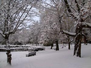 爱丁堡大雪校园内的 George Square Garden