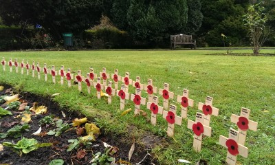 每个小十字架代表一位阵亡的军人。
